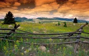 Обои трава, облака, холмы, забор