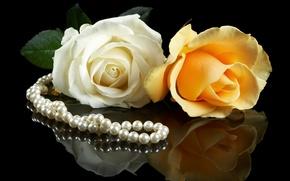 Картинка белый, цветы, желтый, фон, черный, розы, жемчуг, парочка