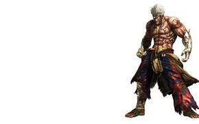 Картинка игра, арт, Asura's Wrath