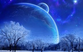 Картинка зима, пейзаж, звезда, планета