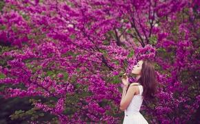 Обои девушка, весна, цветение