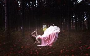 Картинка лес, девушка, платье, в розовом, левитация, Dreamland