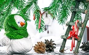 Картинка Лестница, Новый Год, Ветки, Шишки, Праздники, Снеговик