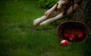 Картинка трава, девушка, макро, фото, фон, корзина, яблоки, размытость