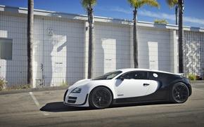 Картинка Bugatti, Veyron, Super, Sport, Price, Blanc, Pur