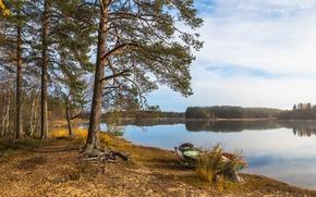 Картинка лес, озеро, лодки