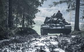 Картинка дорога, лес, танк