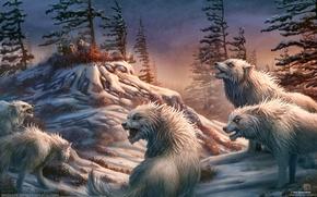 Обои охотники, люди, волки, kerem beyit