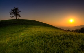 Картинка зелень, небо, трава, солнце, свет, деревья, горы, природа, дерево, холмы, пейзажи, небеса, вершины, долина, травка, ...
