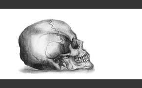 Картинка skull, white, art, death, pencil, drawing