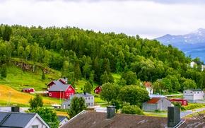 Картинка крыша, небо, трава, облака, деревья, горы, дома, склон, норвегия