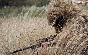 Картинка поле, маскировка, снайпер