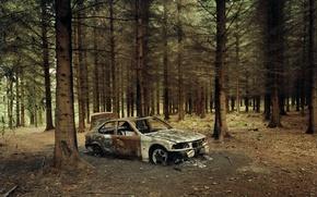 Обои лес, пожар, BMW, остов, автомобиль