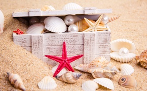 Картинка песок, море, природа, морская звезда, жемчужины, сундучок, морские ракушки