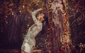 Обои лес, девушка, дерево, платье