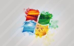 Картинка море, лес, цвета, подсолнухи, мост, краски, windows, операционная система