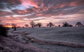 Картинка HDR, trees, field, sunrise, cheshire, silhouette, frost, Bunbury