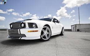 Картинка Mustang, Ford, Cobra, Wheels, Incurve