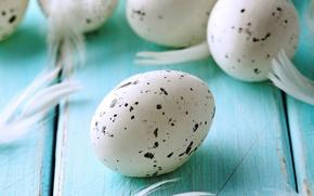 Картинка яйца, пасха, blue, eggs, easter, feather, pastel