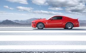 Картинка красный, Mustang, Ford, Shelby, GT500, мустанг, профиль, red, мускул кар, форд, шелби, muscle car, profile, …