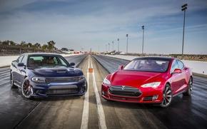 Картинка Dodge, додж, Charger, Tesla, чарджер, SRT, Model S, 2015, P85D
