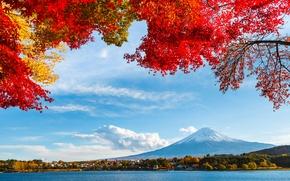 Картинка гора, снег, деревья, листья, фудзияма, озеро, небо, осень, облака, япония