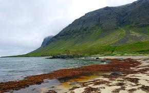 Картинка море, облака, камни, пасмурно, скалы, побережье, Исландия, Westfjords