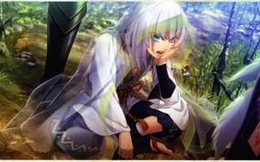 Картинка дорога, лес, мальчик, белые волосы, поза лотоса, visual novel, прозрачная ткань, toki no kizuna, senkinmaru, …