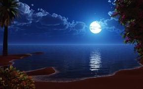 Обои море, луна, берег, рисованый
