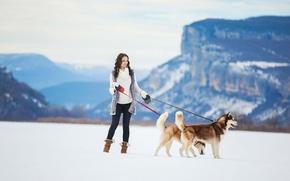 Обои girl, dogs, winter, snow, siberian husky