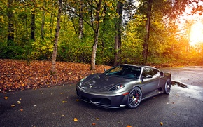 Картинка Ferrari, Green, Sun, Autumn, Tuning, asphalt, Silver, 430, Wheels, Trees, Leaf