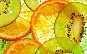 Картинка апельсины, киви, фрукты