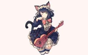 Картинка кошка, гитара, девочка, junwool, show by rock, hijirikawa cyan