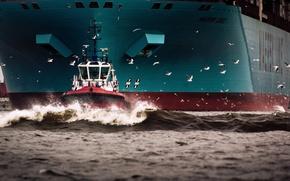 Картинка Вода, Море, Борт, Птицы, Корпус, Судно, Чайки, Контейнеровоз, Бак, Отход, Maersk, Maersk Line, Буксир, Maersk ...