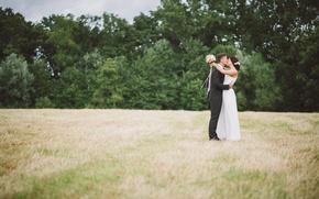 Картинка поле, трава, поцелуй, платье, костюм, невеста, жених