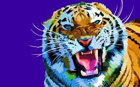 Обои усы, морда, тигр, фон, вектор, хищник, клыки, оскал