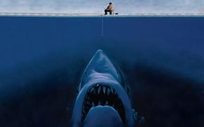 Обои рисунок, акула, рыбак