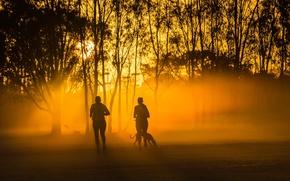 Картинка город, туман, парк, утро, пробежка
