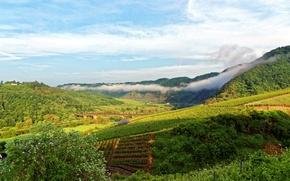 Картинка горы, мост, река, поля, Германия, плантации, Ediger-Eller