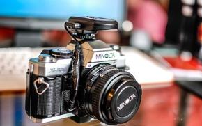Картинка макро, фон, камера, Minolta x500 - 50mmf1.7