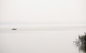 Картинка туман, озеро, лодка, рыбак, утка