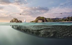 Картинка вода, фантазия, крокодил, luiz alves