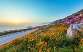 Картинка дорога, море, небо, солнце, закат, цветы, горы, камни, маки, вечер