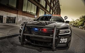 Картинка морда, черный, Dodge, додж, Black, Charger, Pursuit, челленджер, 2015