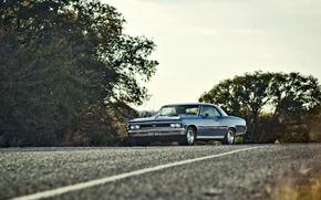 Обои Chevelle, дорога, деревья, фары, 1966, сторона, Chevrolet, небо, колеса