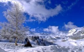 Обои зима, склон, снег, горы, небо, деревья, облака