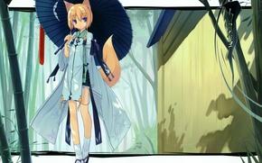 Картинка зонт, хвост, ушки, лисички