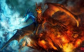 Картинка огонь, дракон, лёд, арт, Dota 2, Jakiro, Twin Head Dragon, A Song of Fire and …