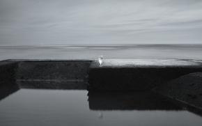 Обои море, бокал, минимализм