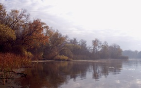 Картинка осень, вода, пейзаж, туман, река, листва, утро, дымка
